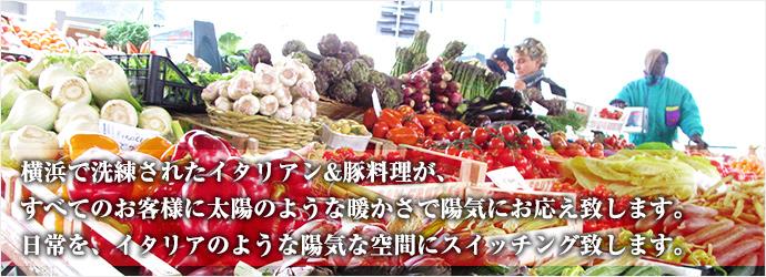 ~横浜で洗礼されたイタリアン&豚料理が、全てのお客様に太陽のような暖かさで陽気にお応え致します。日常をイタリアのような陽気な空間にスイッチング致します~
